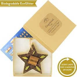 Gingerbread   Scented Star Ornament