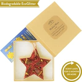 Mulled Wine | Scented Star Ornament